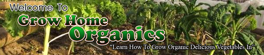 growhomeorganics sh Grow Home Organics   Your Organic Vegetable Garden Authority